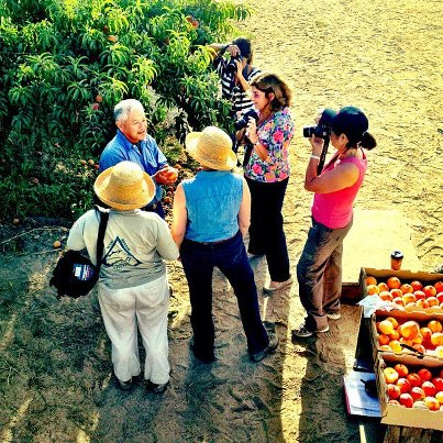 Masumoto Farms, Melissa's Produce grower tour