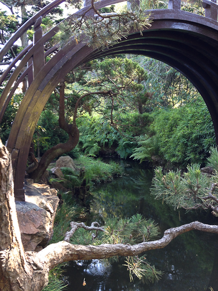 Japanese Tea Garden-8125