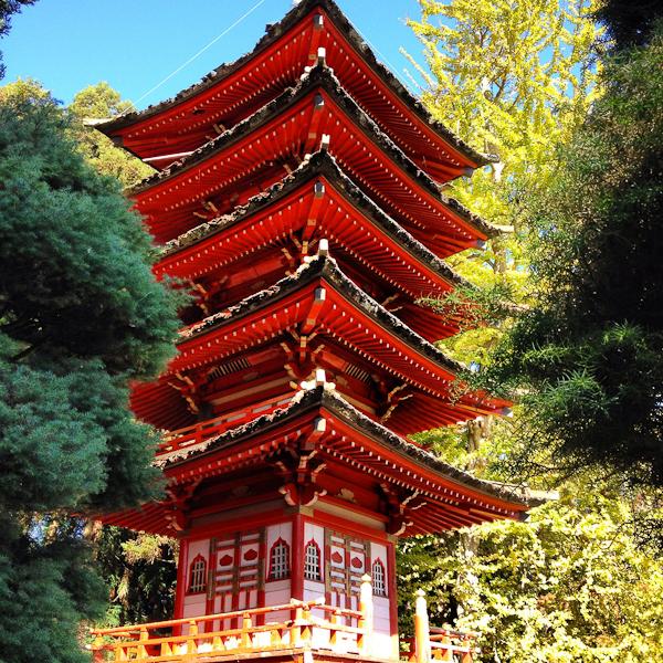 Japanese Tea Garden-8133
