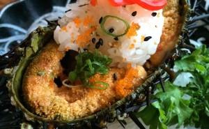 Sea Urchin (uni)
