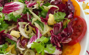Radicchio, Roasted Fennel Panzanella